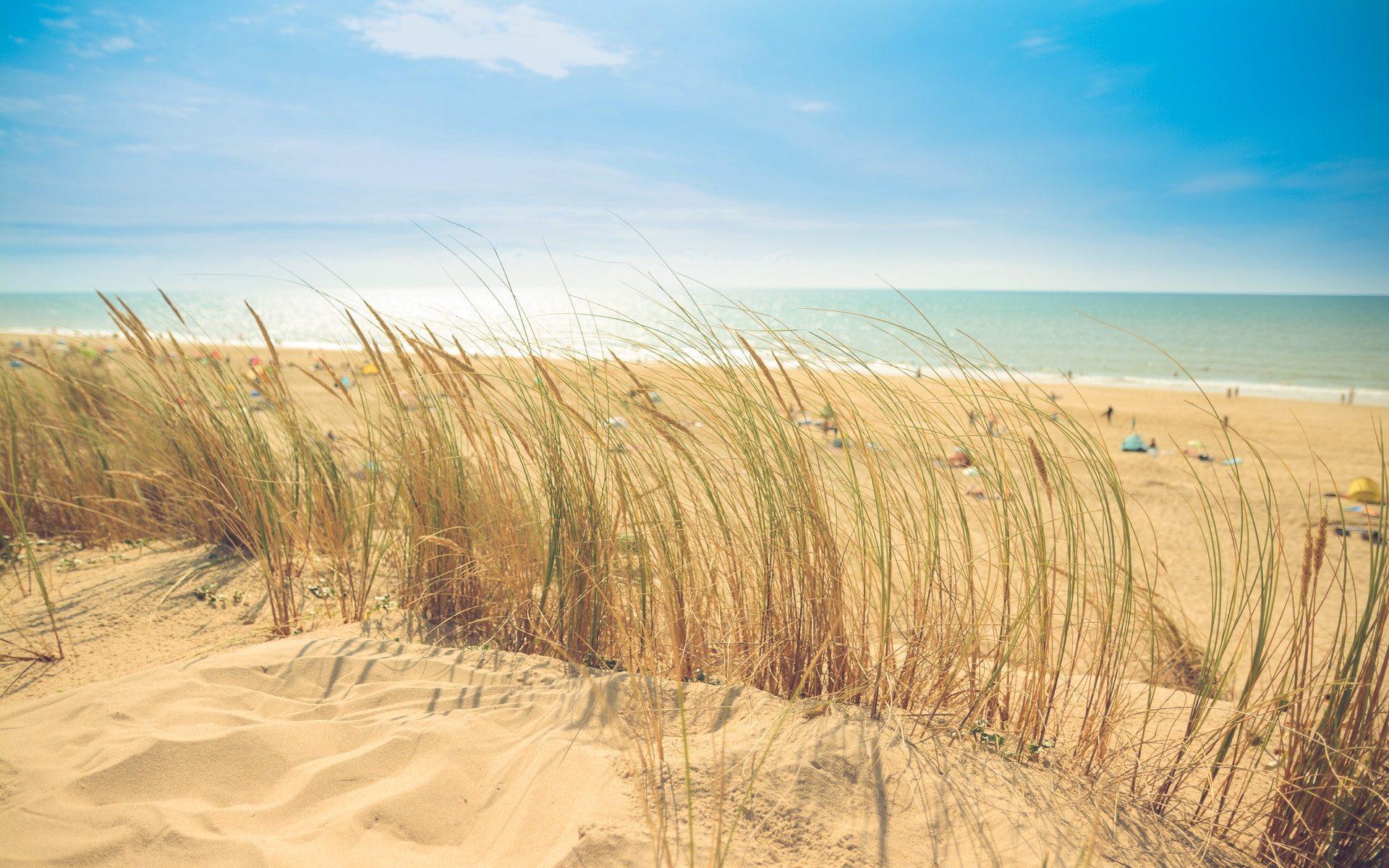 zee-strand-duin-zand-zon